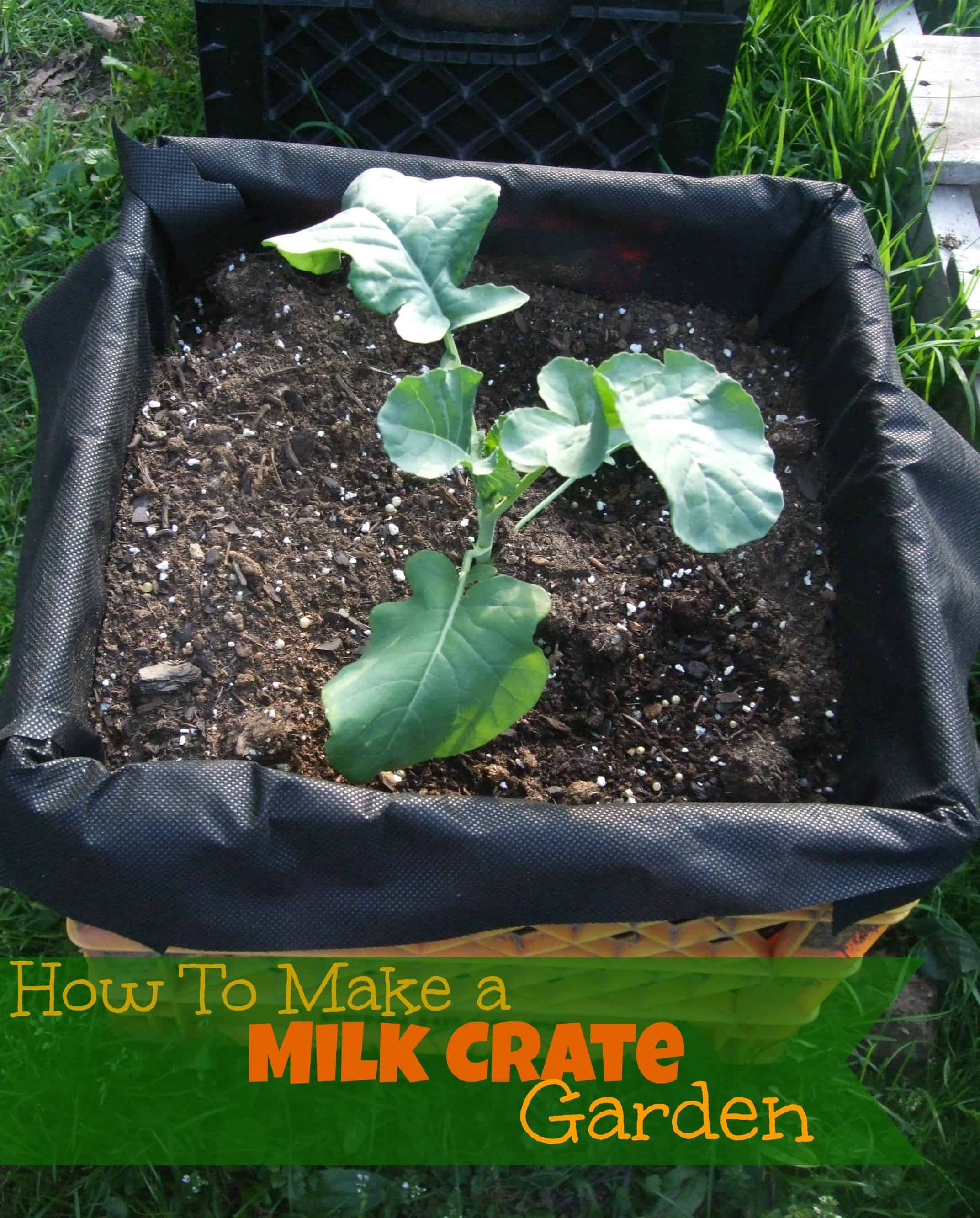how to make a milk crate garden