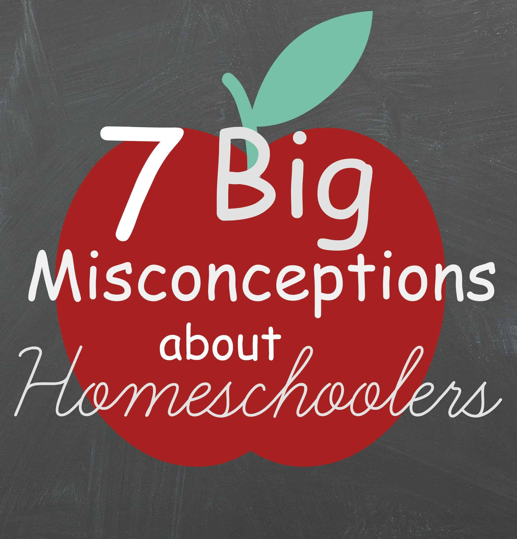 7 Big Misconceptions About Homeschoolers