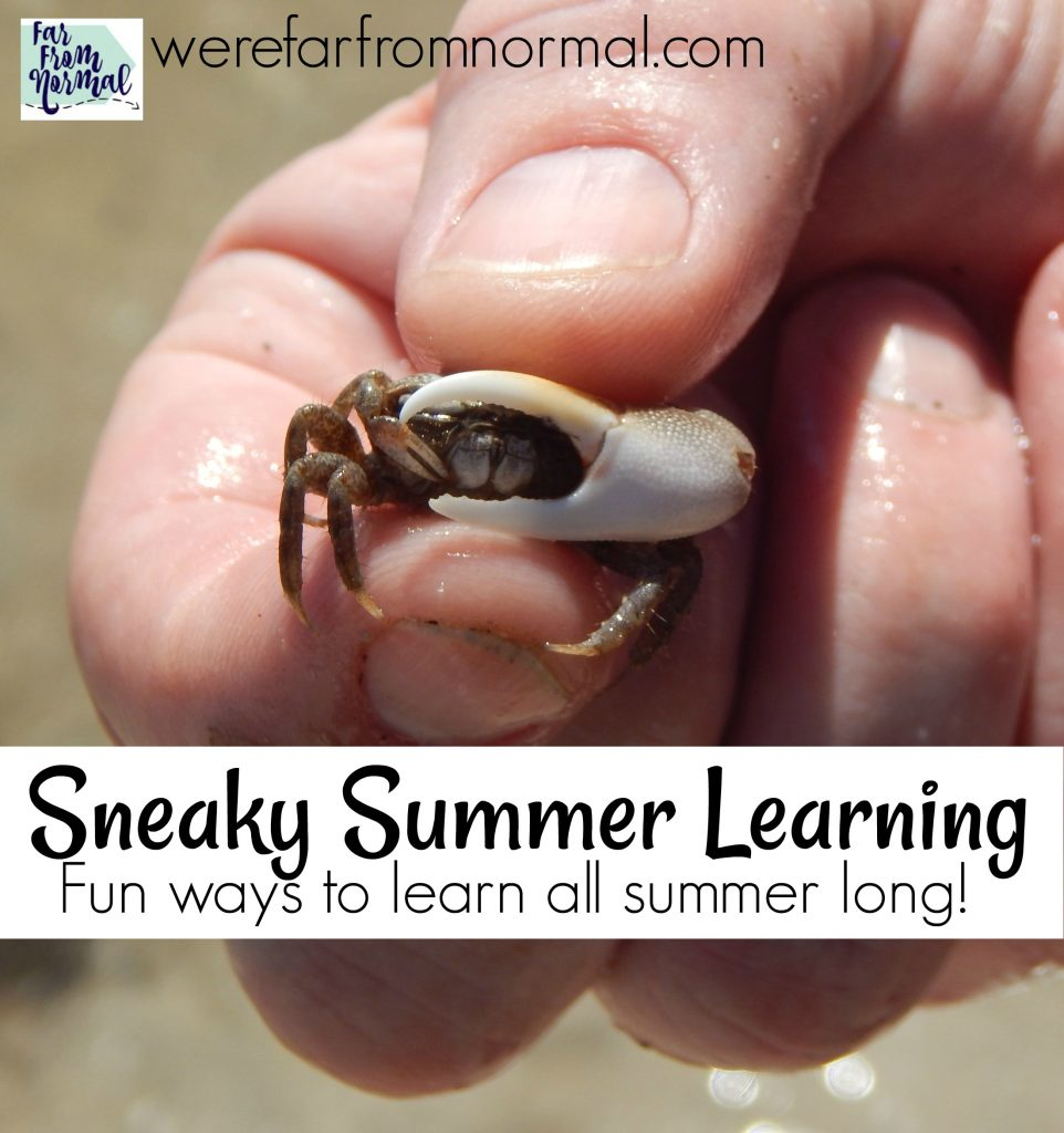 summer learning homeschool