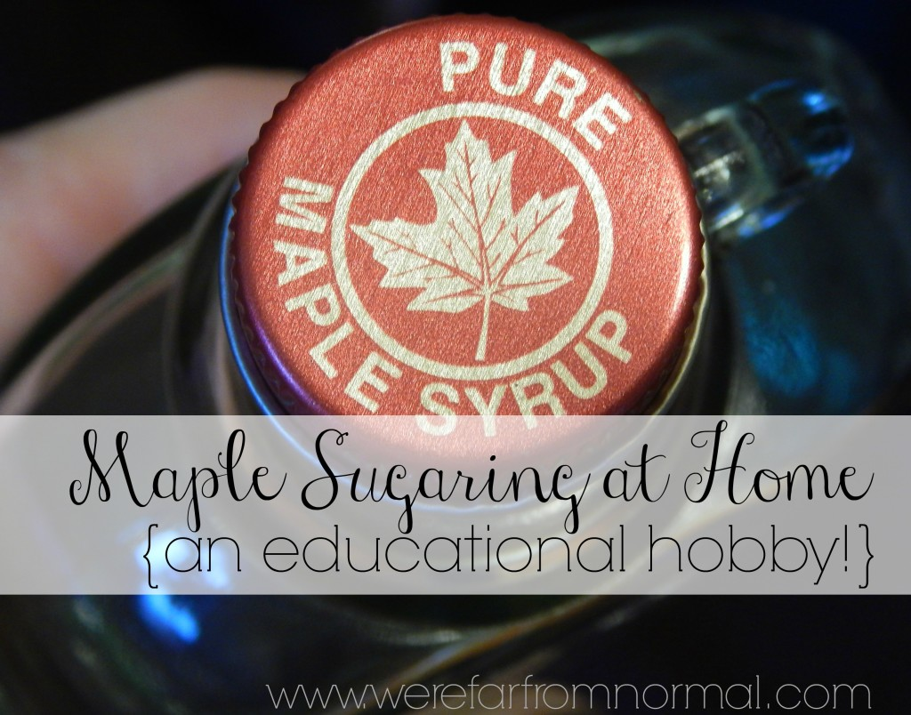 Making maple syurp is easy and fun! It can also make for great homeschool lessons!