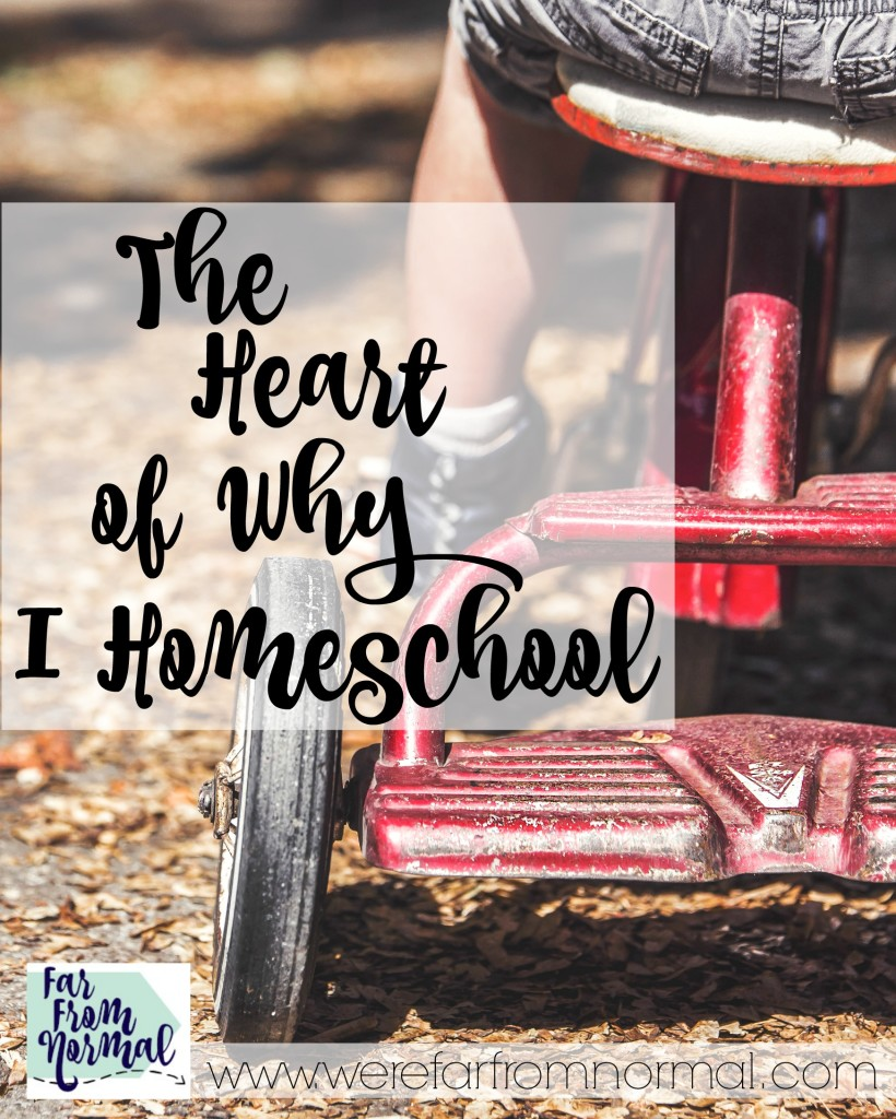 There are a lot of reasons people choose to homeschool but when it really comes down to it, for me, the answer is very simple.