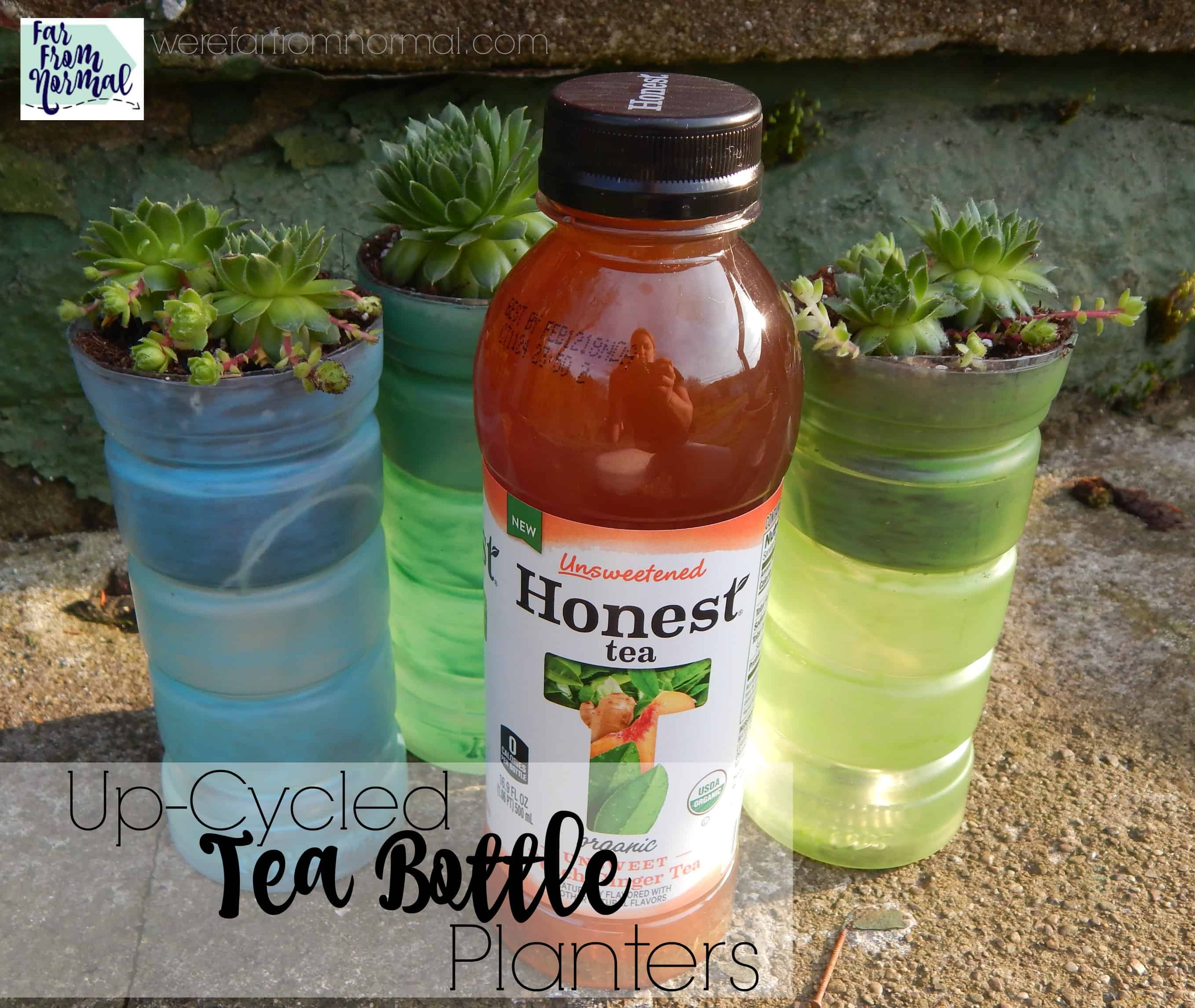 Up-Cycled Tea Bottle Planters