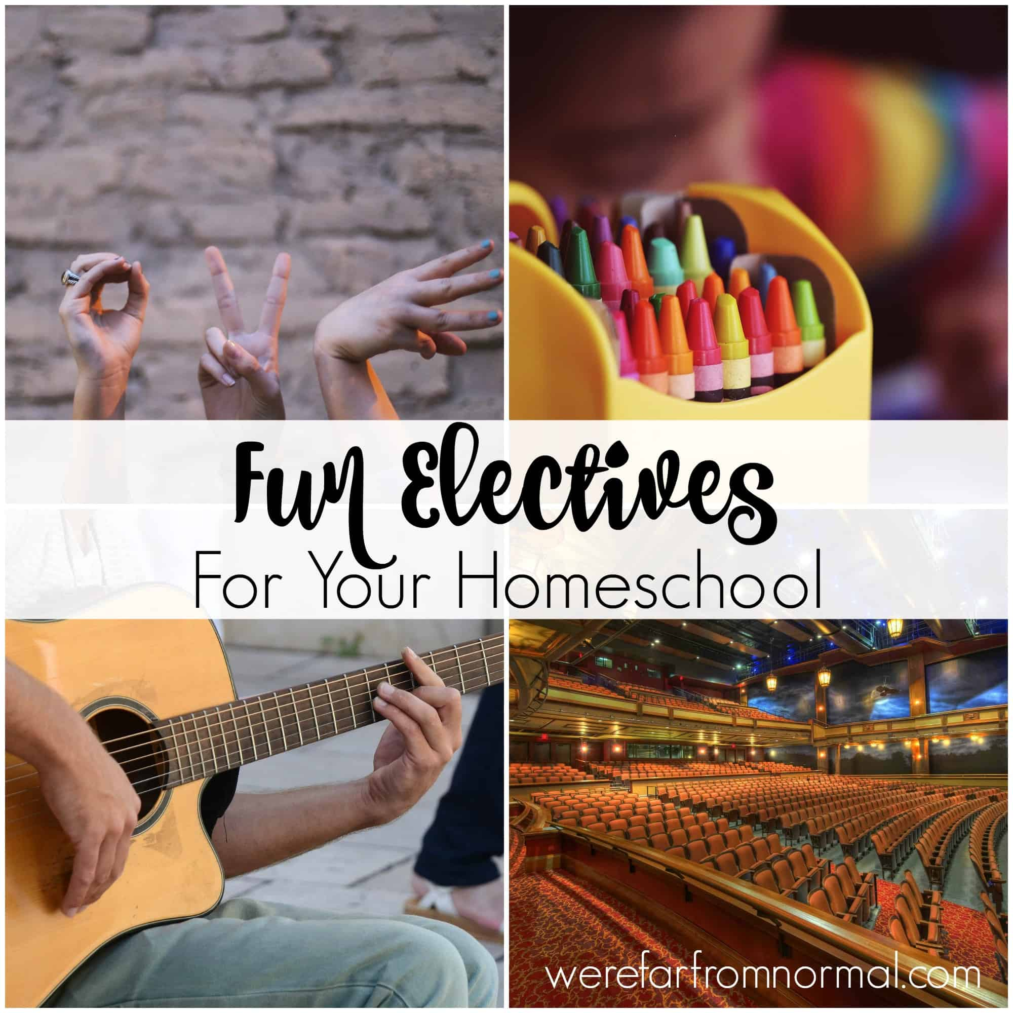 Fun Electives to Add to Your Homeschool Curriculum