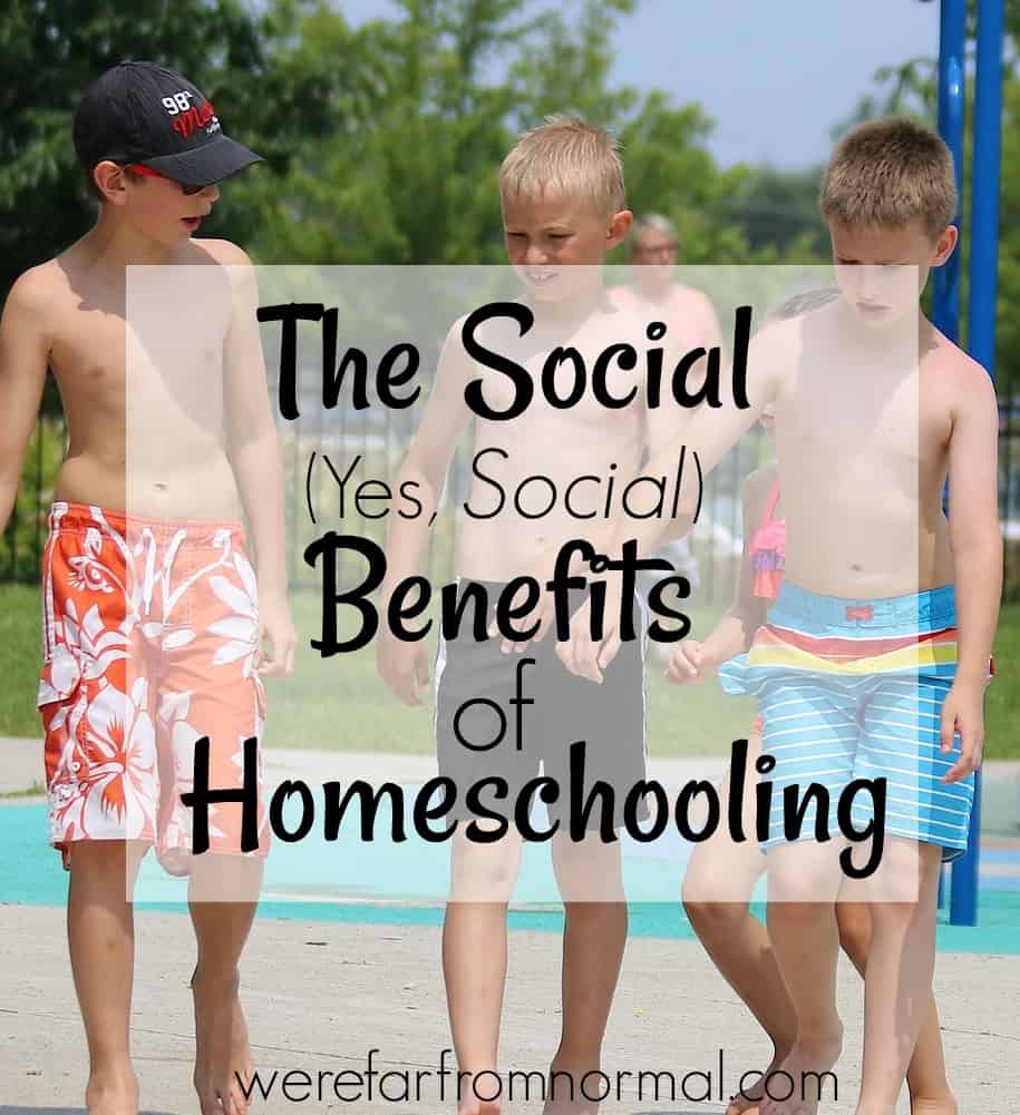 The Social ( Yes, SOCIAL) Benefits of Homeschooling