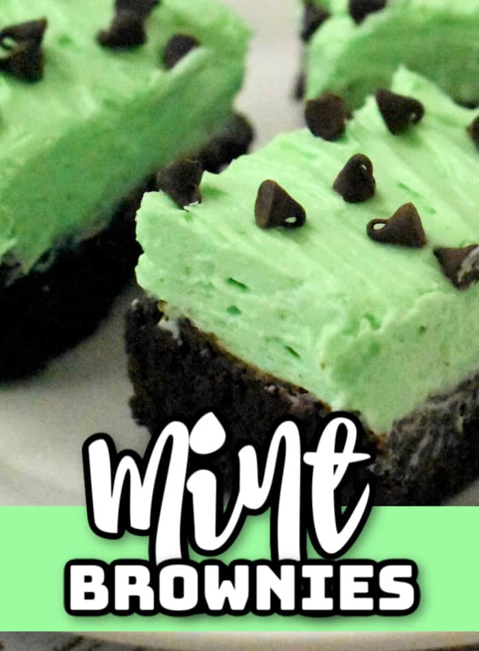 Mint chocolate brownies close up. Brownies with mint cream cheese icing and chocolate chips on top.