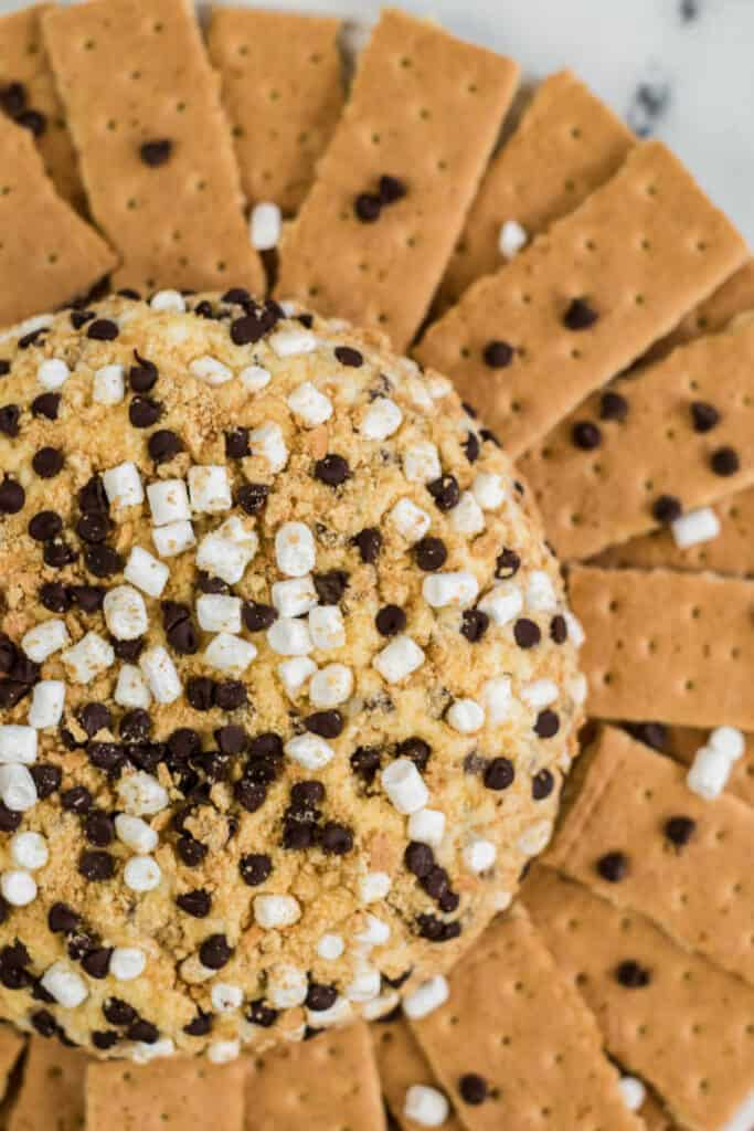 A s'mores cheese ball covered in graham cracker crumbs mini marshmallows and mini chocolate chips surrounded by graham crackers