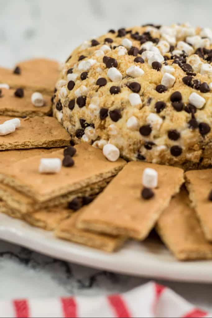 A close up of a s'mores cheeseball surrounded by graham crackers
