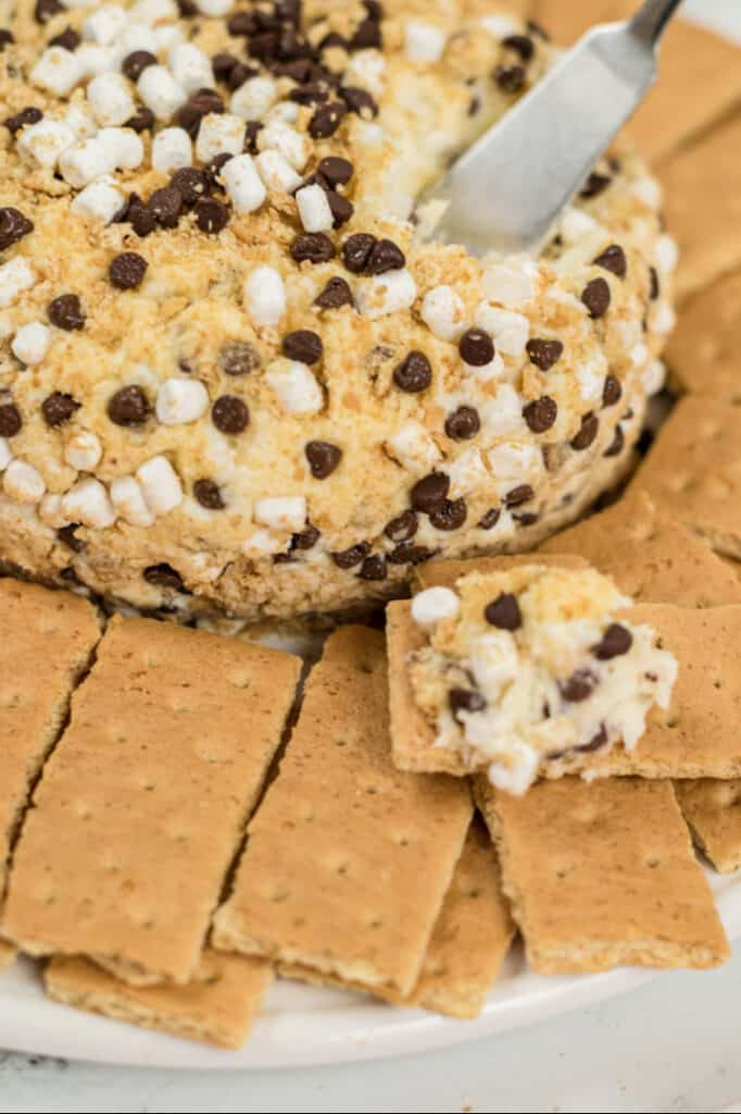 a S'mores cheeseball surrounded by graham crackers with a dipped graham cracker on the side and a silver spreader stuck in the cheeseball
